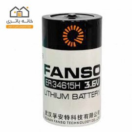 Fanso Lithium ER34615H Battery Size D
