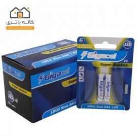باتری نیم قلمی آلکالاین گیگاسل بسته ای (12 ورق - 24 عدد)