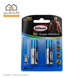 Gilsun Alkalain AA Battery